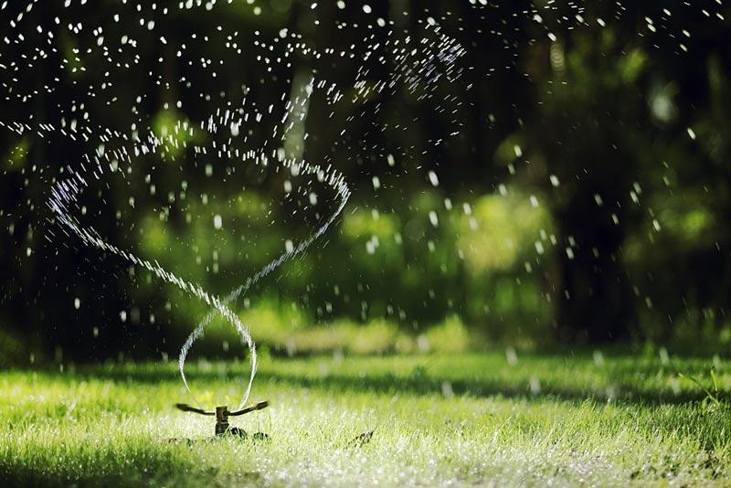 سیستم آبیاری بارانی کوجک