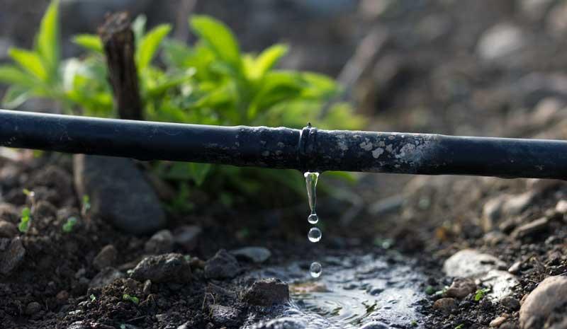 طرز کار سیستم آبیاری قطره ای