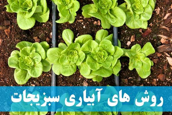 انواع روش های آبیاری سبزیجات