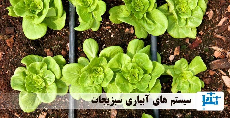 سیستم های آبیاری سبزیجات